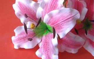 Лилии из фоамирана: мастер класс для начинающих с фото