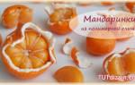 Лепка из полимерной глины: курсы по изготовлению котика и мандаринки