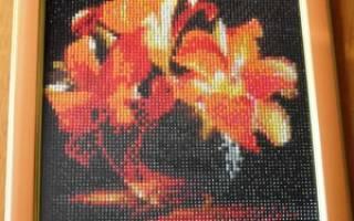 Алмазная вышивка: фото готовых работ и пошаговые инструкции
