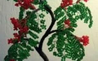 Рябина из бисера: схема и мастер класс для начинающих