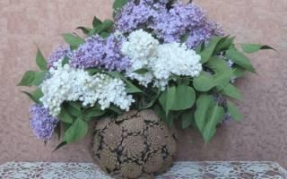 Мастер класс по вазе из шишек: пошагово с фото и видео