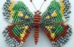 Мастер класс по бисероплетению бабочки: схема для начинающих