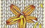 Вышивка по вязаному полотну: мастер класс для детей и для начинающих рукодельниц