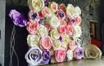 Большие бумажные цветы: мастер класс пошагово с фото-подборкой