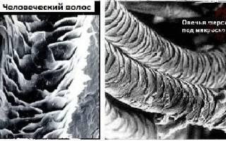 Сухое валяние из шерсти для начинающих — техника, фото и видео-уроки