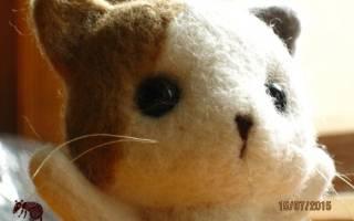 Сухое валяние котенка из шерсти — мастер-класс для начинающих