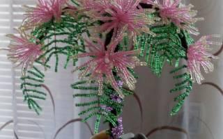 Игольчатое плетение бисером: мастер класс и схемы изделия для начинающих