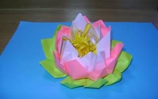 Цветок лотоса своими руками: мастер класс из бумаги