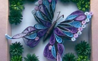 Квиллинг бабочка: мастер класс и схемы для новичков