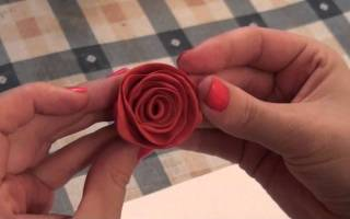 Как сделать розу из пластилина своими руками: красивую розу поэтапно на картоне