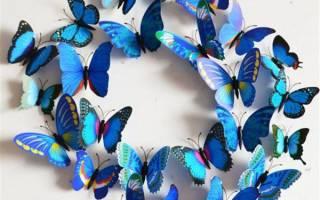Как вырезать бабочку из бумаги: инструкция, шаблоны и трафарет с фото