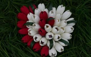 Букет тюльпанов из конфет: мастер класс с фото-подборкой