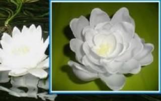 Лилии из пластиковых ложек: мастер класс с видео