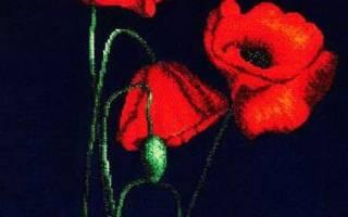 Схемы плетения маков из бисера: мастер класс по вышивке с фото и видео
