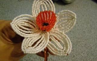 Нарцисс из бисера: мастер класс как делать параллельное плетение