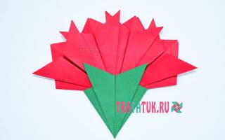Гвоздика из бумаги своими руками: мастер класс по технике оригами с фото и видео