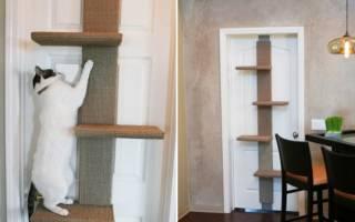 Лазалка для кошек своими руками: чертежи с фото