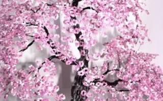 Мастер-класс по сакуре из бисера: фото, видео, схемы как сплести своими руками