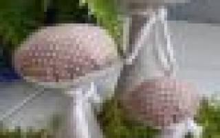 Как сшить шляпу мухомора: выкройка и мк с пошаговыми фото и видео