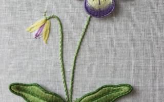 Вышивка шерстяными нитками: мастер класс и схемы