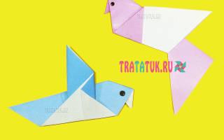 Как сделать голубя из бумаги оригами своими руками: мастер класс со схемами