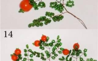 Апельсиновое дерево из бисера: схема плетения и мастер класс своими руками