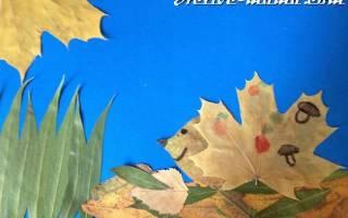 Аппликация ежик из листьев клена: поделка в 1 класс из осенних листьев