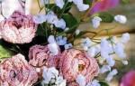Вязание крючком розы: схемы с описанием для начинающих