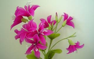 Цветок из капрона: мастер класс для новичков по рукоделию
