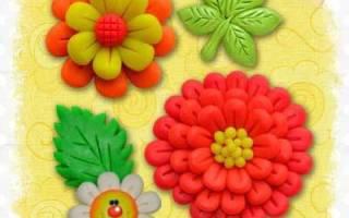 Цветок из пластилина: фото как делать на картоне